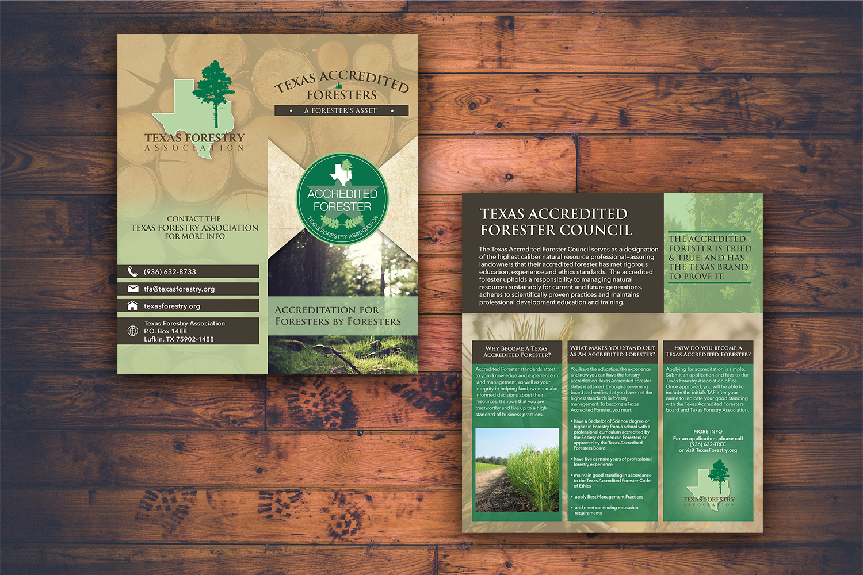 TFA Brochure Mockup
